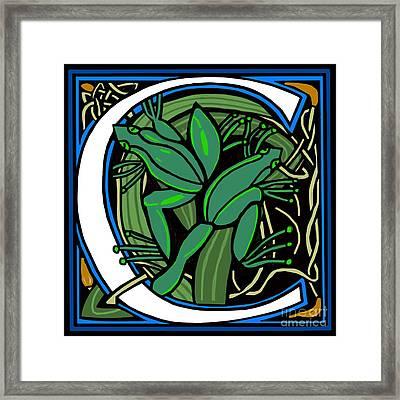 Celt Frog Letter C Framed Print