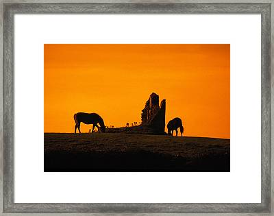 Celtic Horses At Sunset Framed Print by Carl Purcell