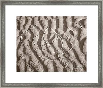 Celtic Not Framed Print by Royce Howland