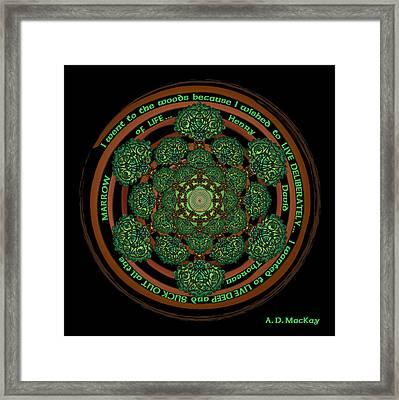 Celtic Tree Of Life Mandala Framed Print