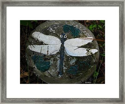 Cement Dragon Framed Print by Greg Patzer