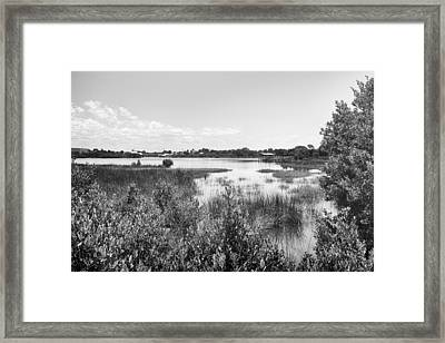 Framed Print featuring the photograph Cemetary Point Boardwalk by Howard Salmon