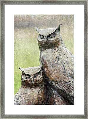 Cemetery Art Two Owls In The Rain Framed Print