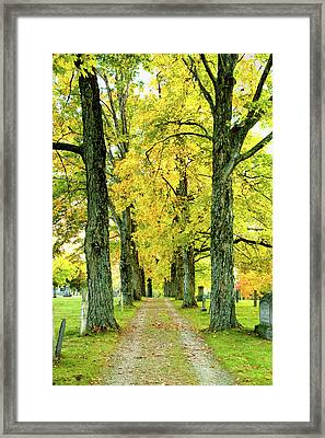 Framed Print featuring the photograph Cemetery Lane by Greg Fortier