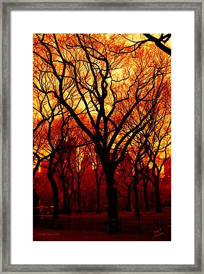 Cental Park In Red Framed Print by Diane C Nicholson