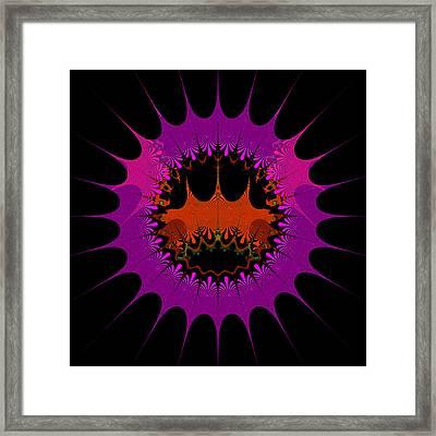 Centalgins Framed Print