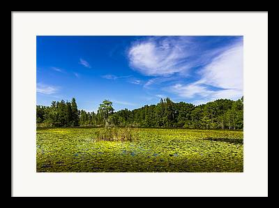 Pasco County Framed Prints