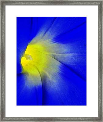Center Of Being Framed Print