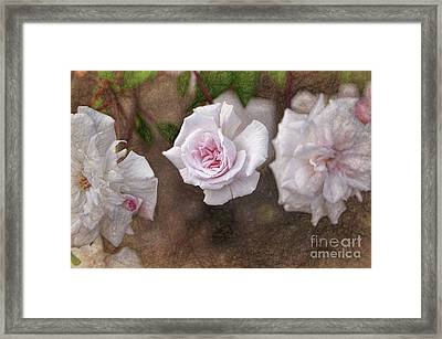 Center Of Hope Framed Print by Gina Savage