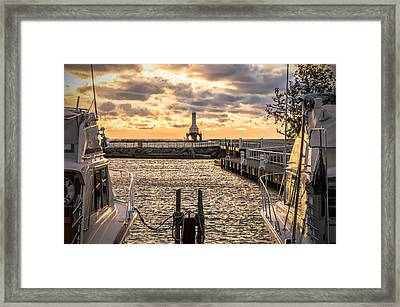 Centered In The Marina Framed Print