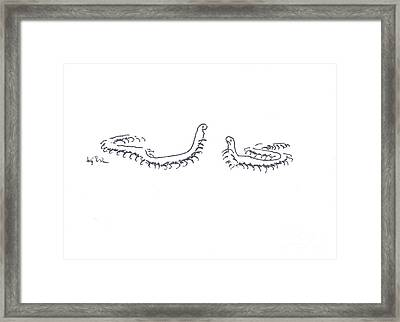 Framed Print featuring the painting Centipedes In Discussion Cartoon by Kip DeVore