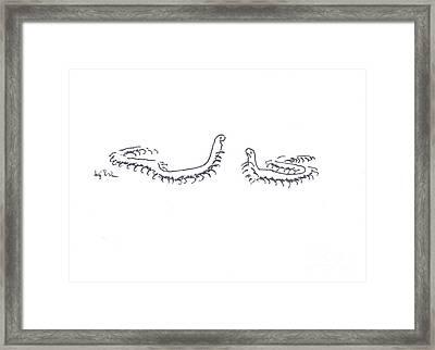 Centipedes In Discussion Cartoon Framed Print by Kip DeVore