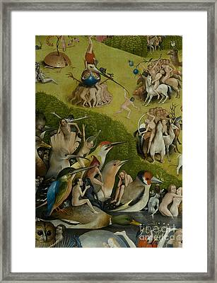 Central Panel From The Garden Of Earthly Delights Framed Print
