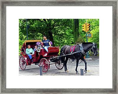 Central Park 5 Framed Print