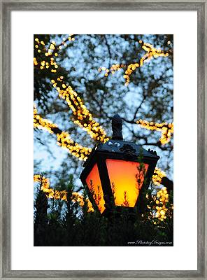 Central Park 6546 Framed Print by PhotohogDesigns