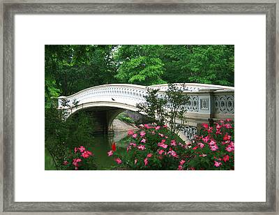 Central Park Bow Bridge In Spring Framed Print