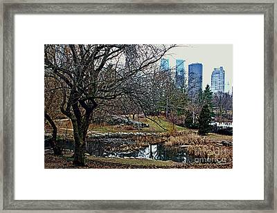 Central Park In January Framed Print