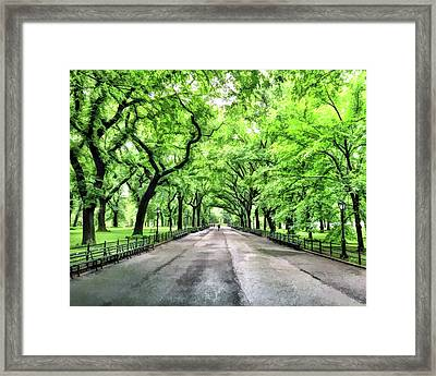 Central Park Mall Framed Print