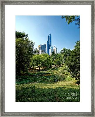Central Park Ny Framed Print by Daniel Heine