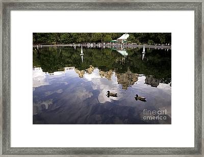Central Park Pond With Two Ducks Framed Print by Madeline Ellis