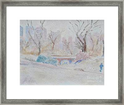 Central Park Record Early March Cold Circa 2007 Framed Print