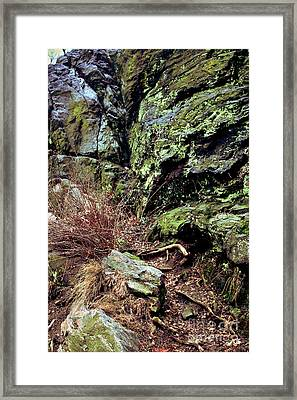Central Park Rock Formation Framed Print