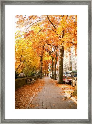Central Park West Framed Print by Ariane Moshayedi