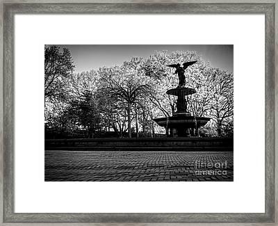 Central Park's Bethesda Fountain - Bw Framed Print by James Aiken