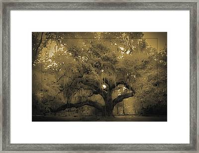 Centurion Oak Framed Print by DigiArt Diaries by Vicky B Fuller