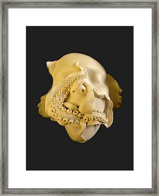 'cephalophilia' Framed Print by Ruth Power