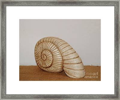 Ceramics Framed Print