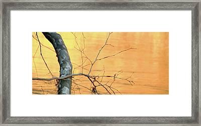 Chagrin River Gold Framed Print