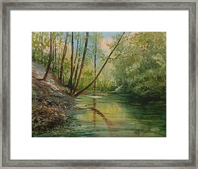 Chagrin River In Spring Framed Print