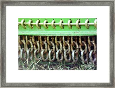 Chain Guard Framed Print by Linda Drown