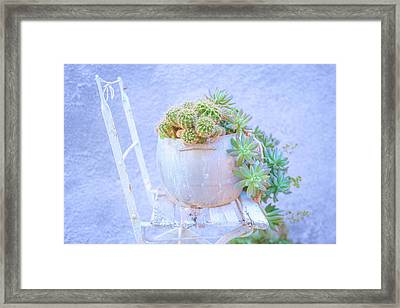 Chair And Cacti Framed Print