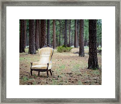 Chair In The Forest Framed Print