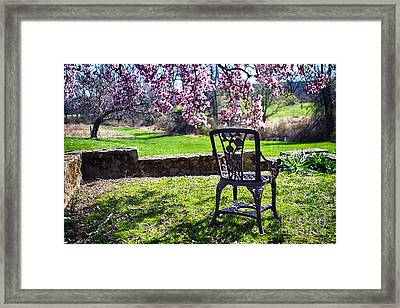 Chair In The Garden Under A Blooming Magnolia Tree Framed Print by George Oze