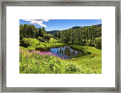 Chairi Lake Framed Print by Evgeni Dinev