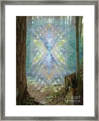 Chalice-tree Spirt In The Forest V2 Framed Print by Christopher Pringer