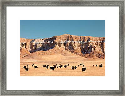 Chalk Cliffs Framed Print by Todd Klassy