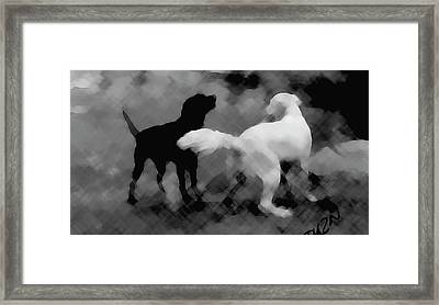 Framed Print featuring the photograph Challenger by Tom Dickson