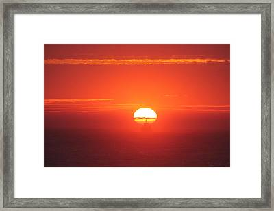 Challenging The Sun Framed Print