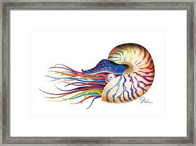 Chambered Nautilus On White Framed Print by Trevor Irvin