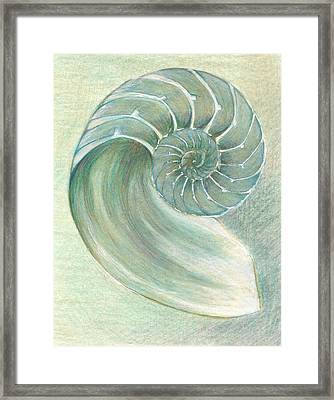 Chambered Nautilus Study In Green Framed Print by Lisa Le Quelenec