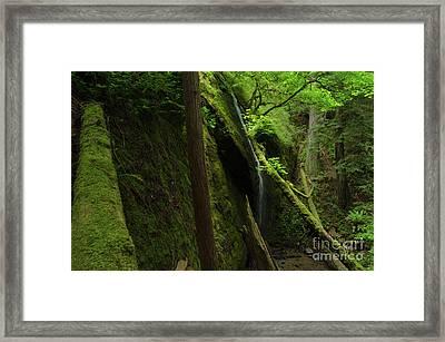 Chamberlain Falls  Framed Print