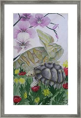 Chameleon And Greek Tortoise Framed Print by Judit Szalanczi