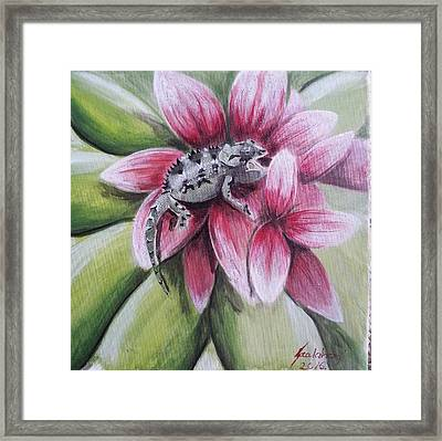 Chameleon In The Flower Framed Print by Judit Szalanczi