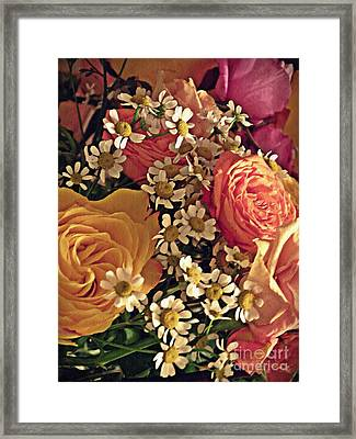 Chamomile And Roses 3 Framed Print by Sarah Loft