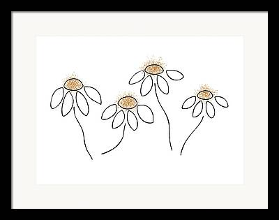 Daisy Drawings Framed Prints