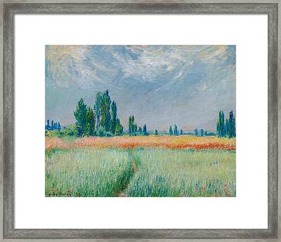 Champ De Ble Framed Print by Claude Monet